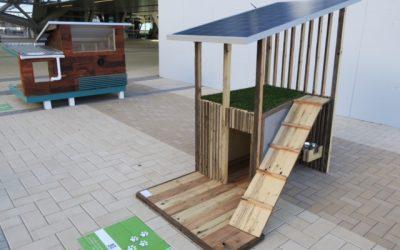 Innovative Airport Installations- Solar Dog House Display at Denver International Airport!